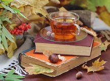 still-life-tea-books-leaves-autumn-44853196