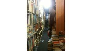 the bookstore shelves